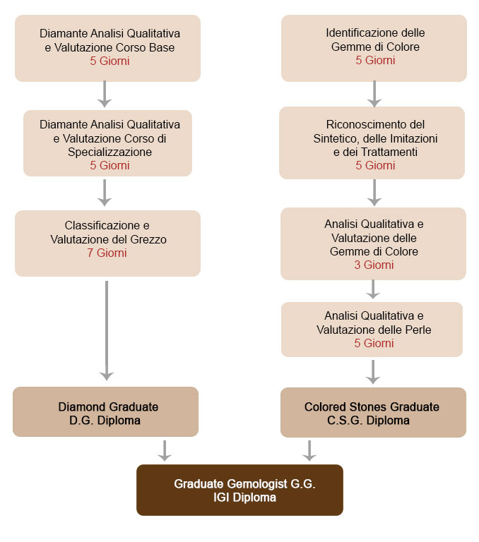 Come Diventare Gemmologo IGI