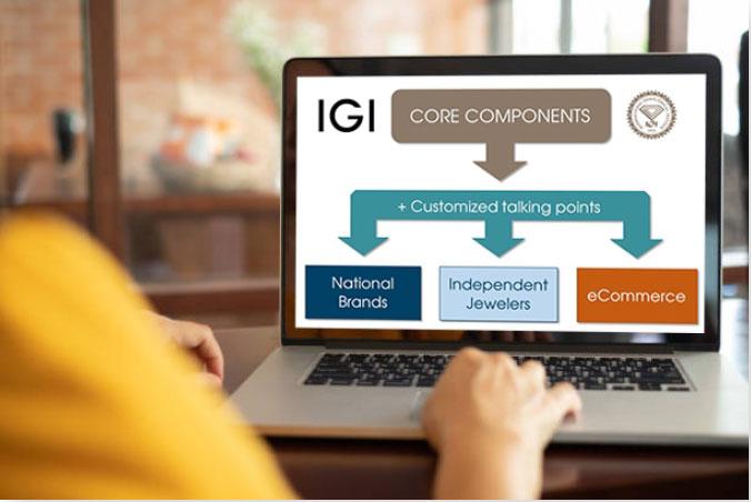 IGI education core components diagram