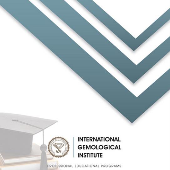 IGI professional programs