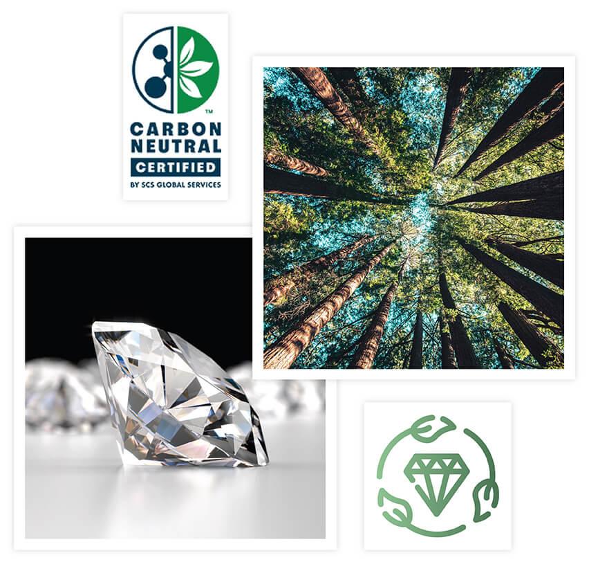 SGS carbon neutrality logo