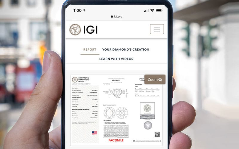 Read more about the article See IGI's new Digital Report Platform