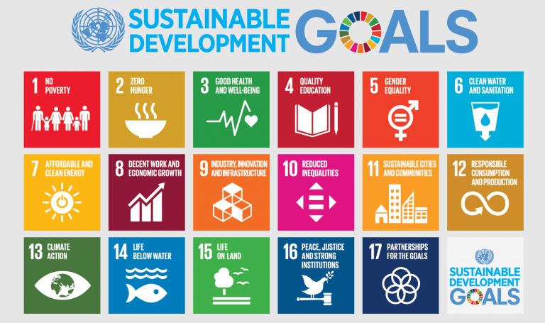 UN 17 Sustainability Goals
