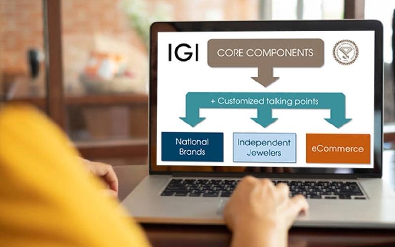 IGI Announces Interactive eLearning Programs